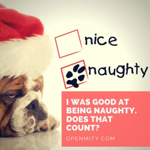 Sexy-Christmas-quotes-naughty